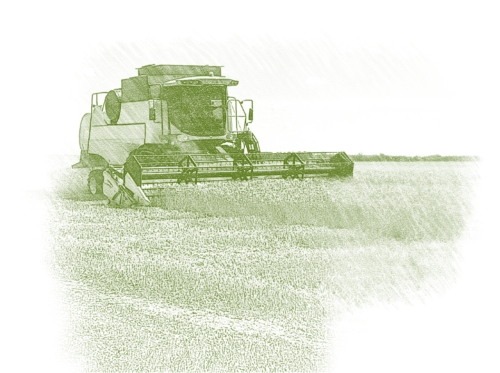Семена сельскохозяйственных культур