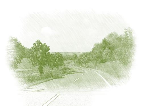 Дорожное озеленение