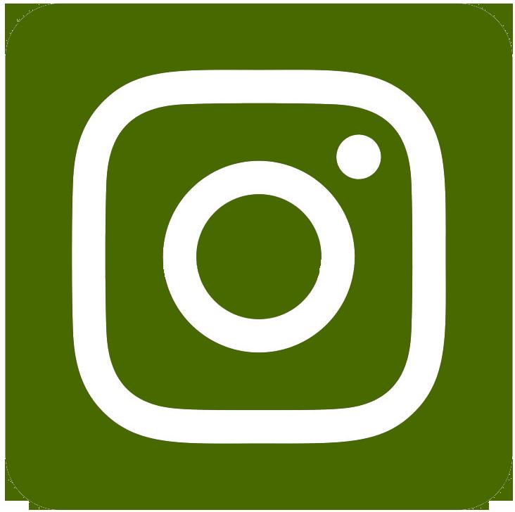 Семена трав Instagram
